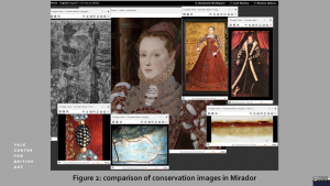 figure 2:comparison of conservation images in Mirador