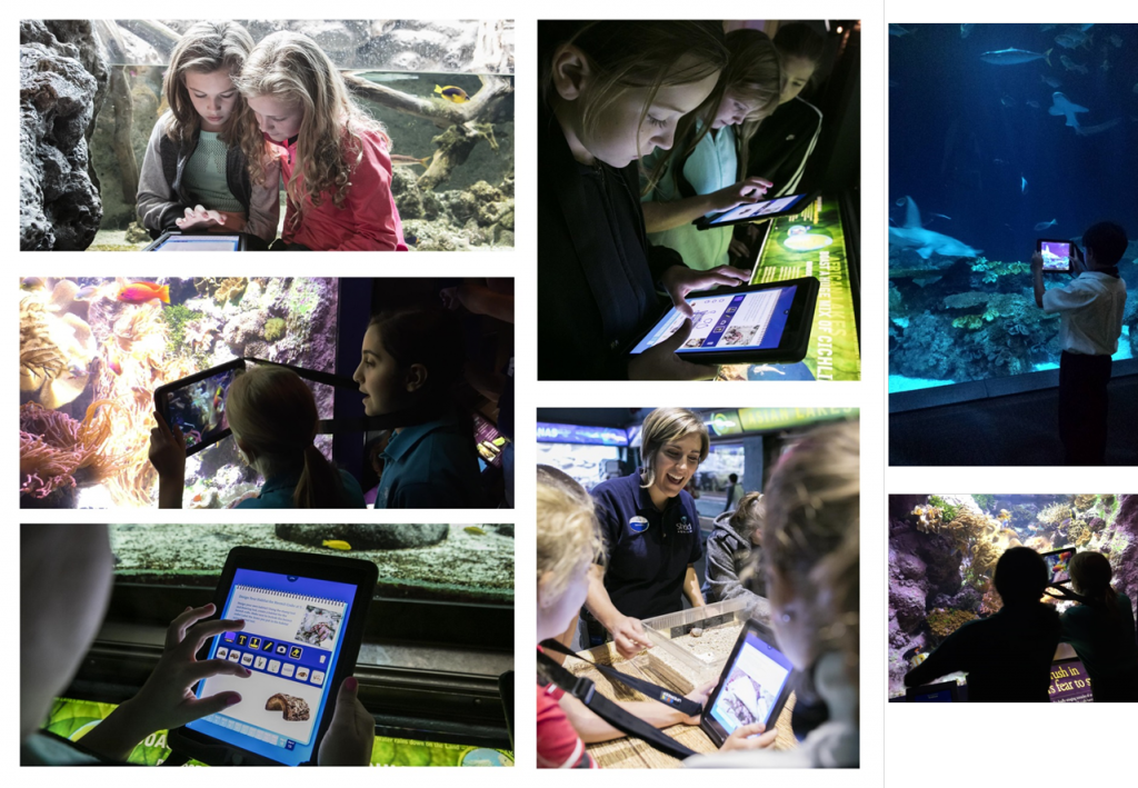 Multiple pictures of students holding iPads, taking pictures of animals and exhibits, and working within the app.