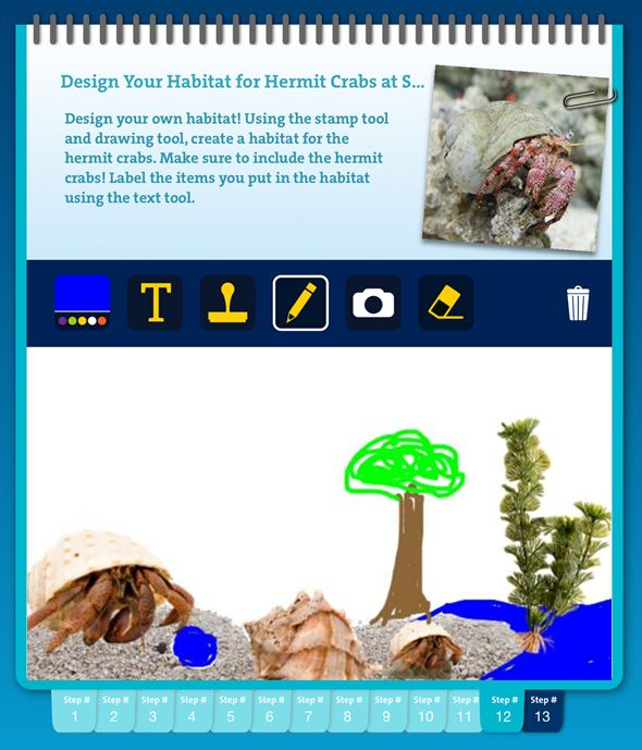 Screen shot of the tablet app of a student designed habitat, including hermit crabs, trees, shells, sand, and water