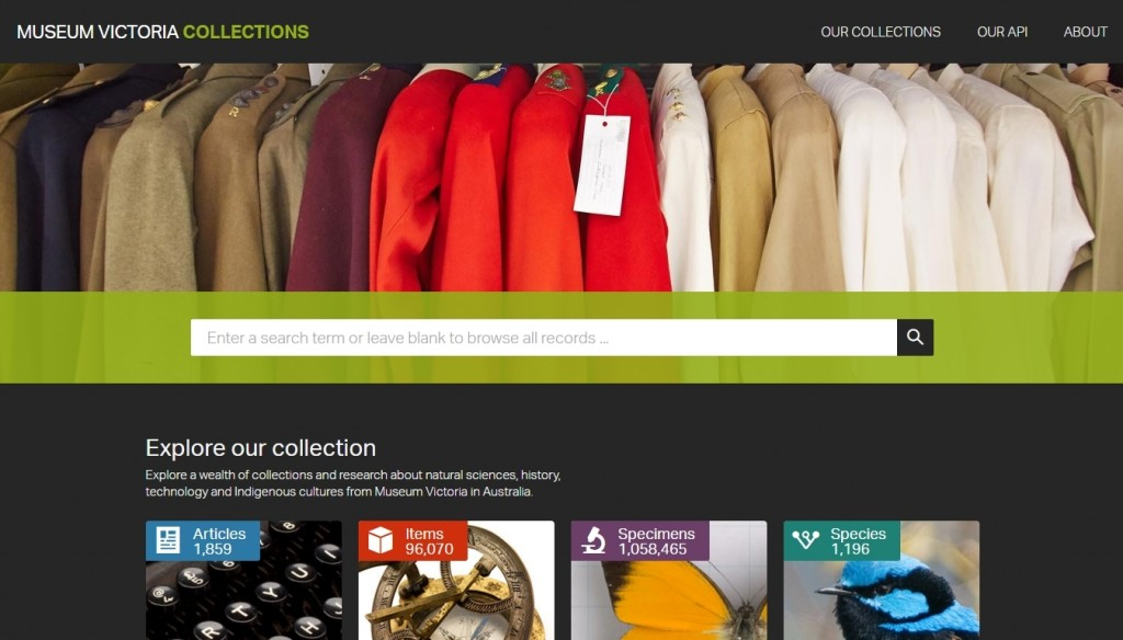Website with search bar and colourful jacket collection